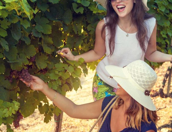 two-gals-in-vineyard-reduced